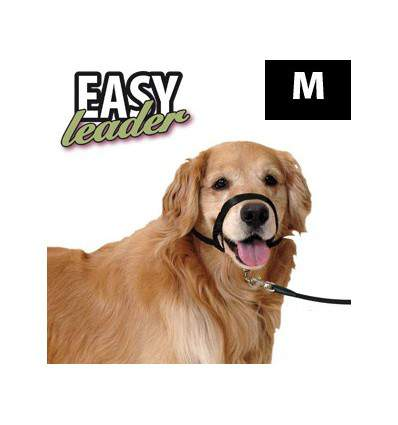 Easy Leader - collier pour chien