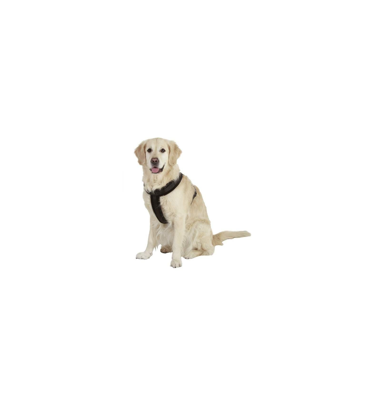 harnais pour chien cross sportiv plus accessoire chien. Black Bedroom Furniture Sets. Home Design Ideas