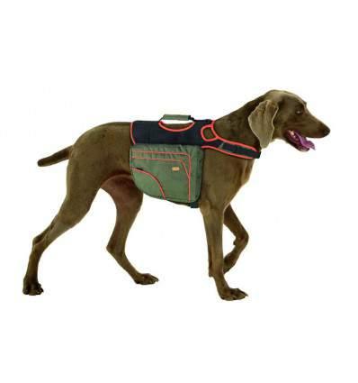Sacoche de randonnée pour chien