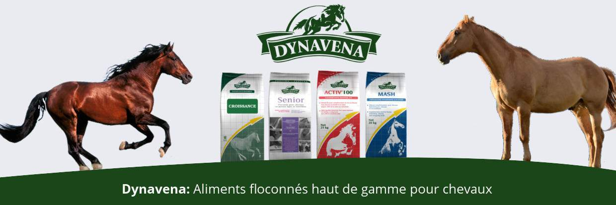 dynavena-aliment-cheval