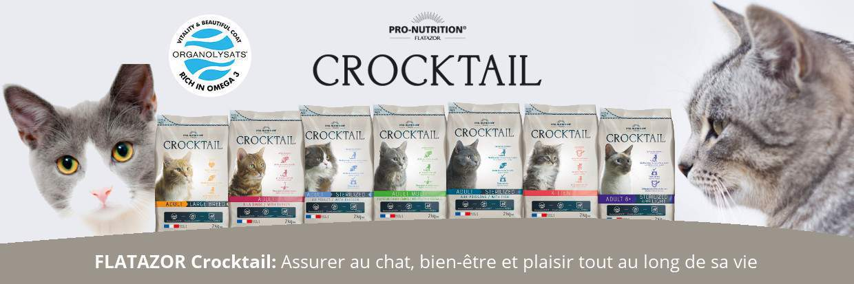 platazor-pronutrition-croquette-chat-2018-2